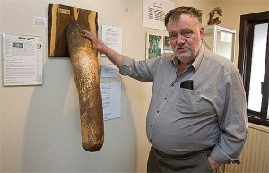 penis museum  bizarre photo
