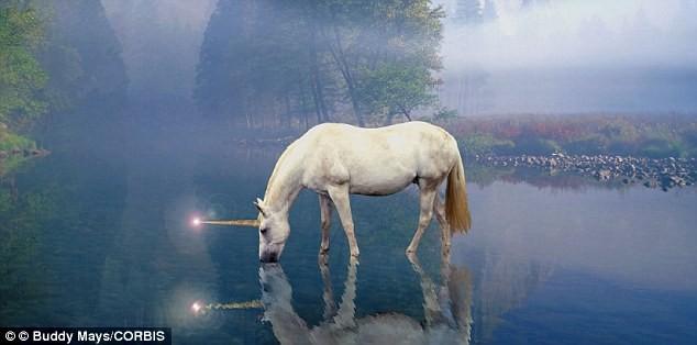 unicorn north korea